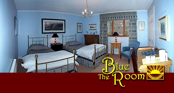The Blue Room: a twin with private facilities across the hall!